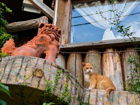 那覇で猫とライオン像