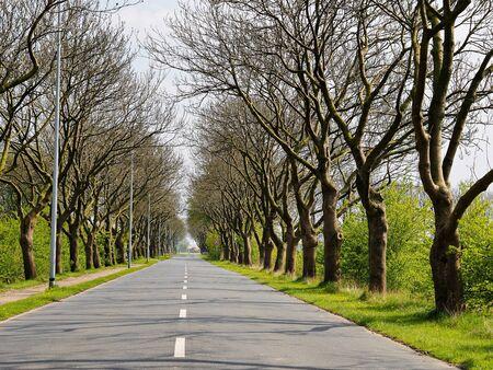 lange Gasse mit leerer Straße Lizenzfreie Bilder