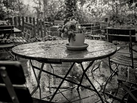 Pflanzen und Tisch im Regen