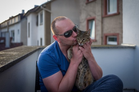 africa kiss: Savannah cat with owner cuddling