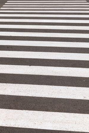 paso de peatones: crosswalk or pedestrian crossing in the city with nobody