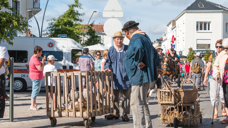 plunges: Challans, France - August 11, 2016 : event Once Challans Autrefois Challans organized by the city and plunges visitors into the city from the early 20th century - man who walks around with an old cage of ducks