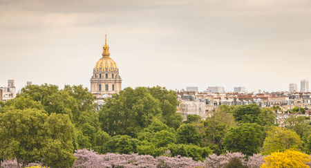 view of the roofs of the Invalides monuments from the Place du Trocadero, Paris, France