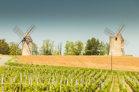 old windmill behind vineyards near Saint Emilion near Bordeaux France