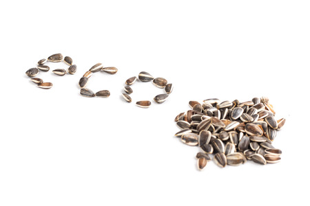 word eco in sunflower seed on white background in studio