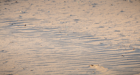 footprint in the fine sand by the sea in Portugal Stock Photo