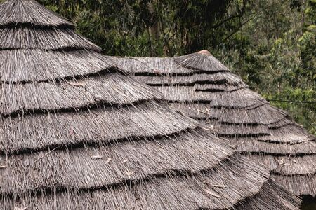detail of a traditional thatched roof of ancient portugal Stockfoto