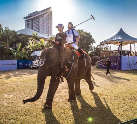Polo Elephant Event in Bangkok riverside, Thailand Foto de archivo - 132017148