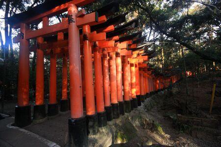 Fushimi Inari taisha thousand shrines in Kyoto Japan