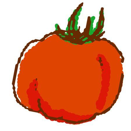 Vegetables tomato Illustration
