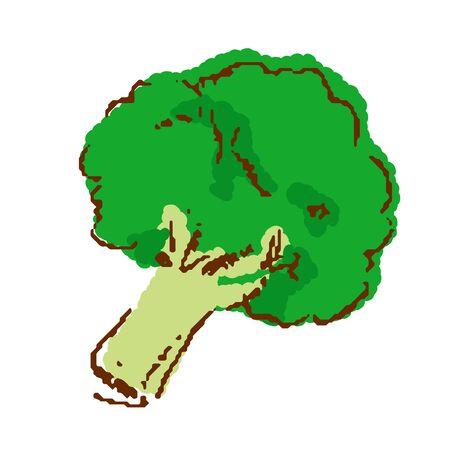 Vegetables broccoli
