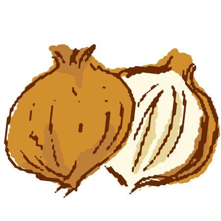 Vegetables onions Stock Illustratie