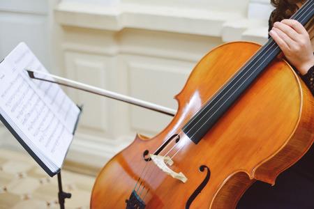 unrecognizable person: Classical music professional cello player solo performance, unrecognizable person Stock Photo