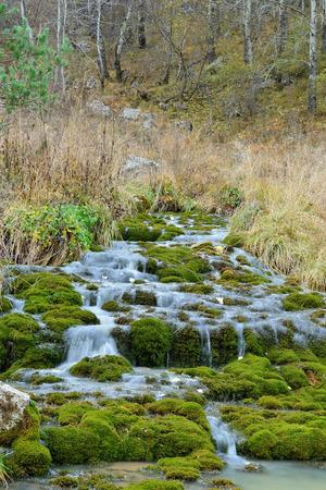 irish countryside: stream flowing through moss Stock Photo