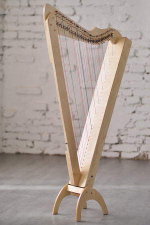soloist: Light harp on a brick wall background.