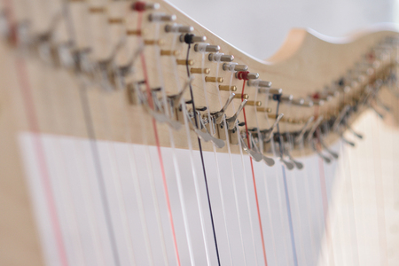 Close-up of harp strings. Stock Photo