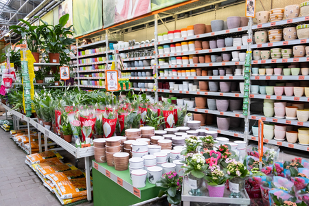 ST. PETERSBURG, RUSSIA - MARCH, 2019: Plants in an Intratuin garden store