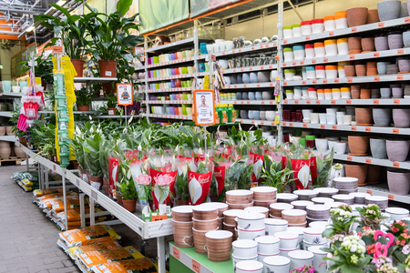 ST. PETERSBURG, RUSSIA - MARCH, 2019: Plants in an Intratuin garden store Editorial