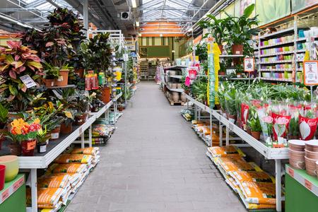S T. Petersburgo, Rusia - marzo de 2019: Plantas en una tienda de jardín Intratuin