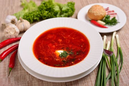 Traditional Ukrainian Russian borscht with white beans on the bowl. Traditional Ukraine food cuisine