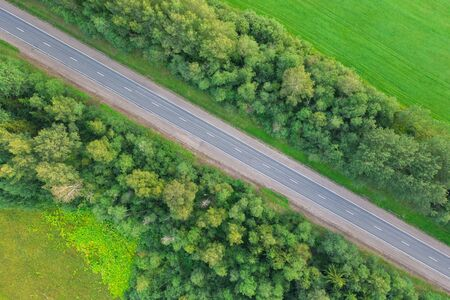 Road in the colored summer forest aerial view 写真素材