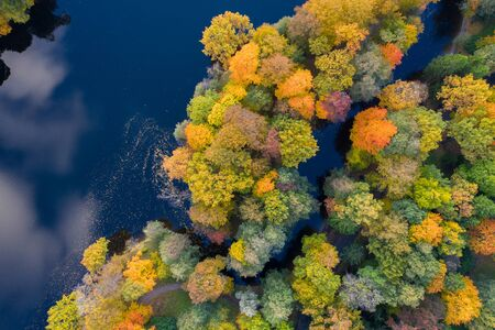 Forest Edge Over Lake. Top Down Drone Aerial Image. Vibrant Autumn Colors. Imagens