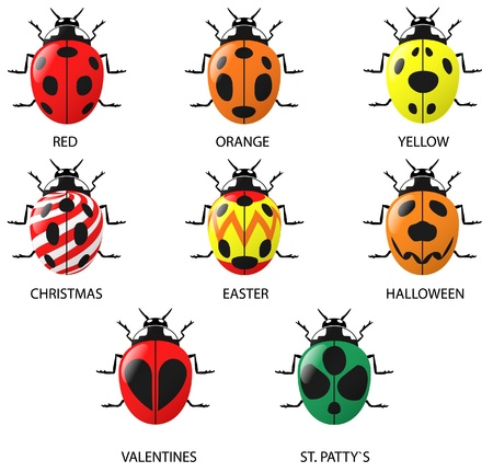 Lady Bugs (real and imagined) Vector