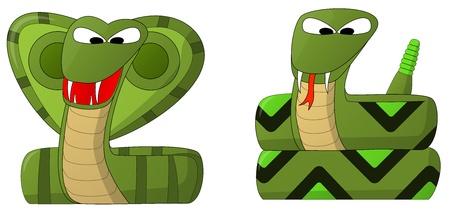 Snakes  Cobra and Rattler