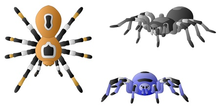 Spiders Illustration