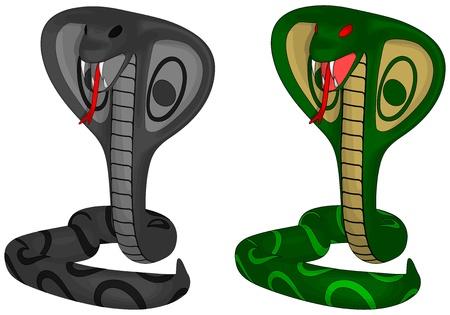 Cobra Illusztráció