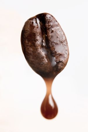 extraction: Drop of coffee dripping from coffee seed. Shallow depth of field. Stock Photo