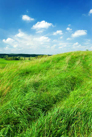 mazury: Saturated summer landscape - green grass on the top of the hill. Mazury, Poland.