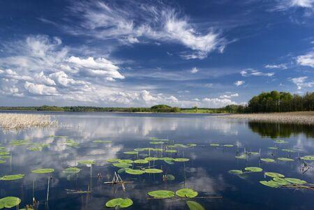 Lake view with water lilies. Mazury, Poland. aRGB. photo