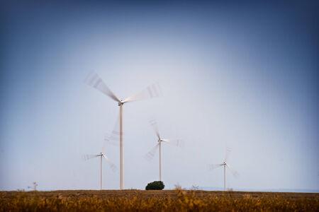 windfarm: Windfarm - wind turbines working on the field at dusk.