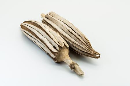 sear: Dried okra Stock Photo