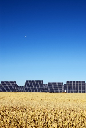 Solar panels to produce electricity from the sun, under blue sky photo