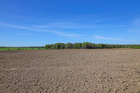 Ploughed agricultural field in the spring