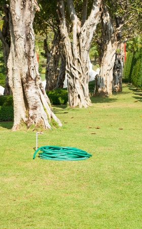 water hose: water hose  on the lawn Stock Photo