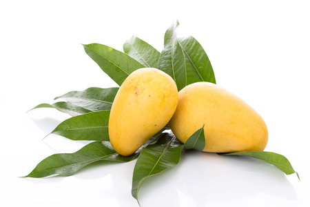 mango on white background Stock Photo