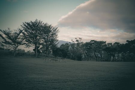 Fresh green park with clouds and smoky mountains landscape (vintage effect)