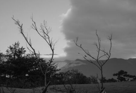 Green park with clouds and smoky mountains landscape (black and white effect)
