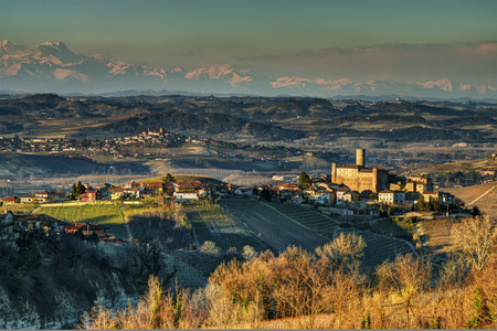 The hills and vineyards of the Langhe. - A wide view of the hills of the Langhe cultivated with vineyards and farms and wineries, around the village of Castiglione Falletto.