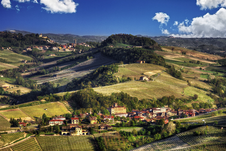 The land of wines, the Barolo and the villages of Barolo and Monforte d'Alba, in the production area of ??the