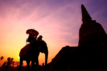 elephant and Tourist silhouette in thailand