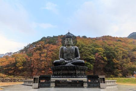 Buddha in the Sinheungsa Temple at Seoraksan National Park, South Korea photo