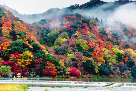 秋には、京都市の嵐山 写真素材
