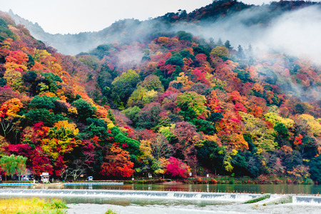 Arashiyama in Autumn ,Kyoto, Japan 写真素材