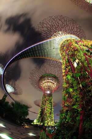 hectares: SINGAPORE - FEBRUARY 14 : Panorama An aerial view of Gardens by the Bay on Feb 14, 2014 in Singapore. Gardens by the Bay is a park spanning 101 hectares of reclaimed land
