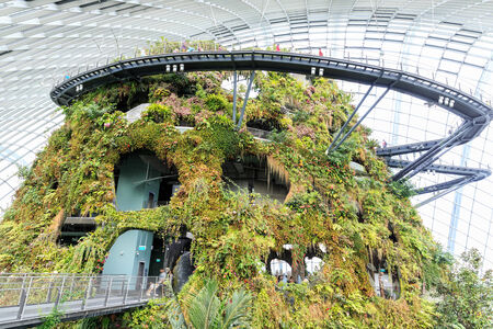 SINGAPORE-FEBRUARY 14: Cloud Forest Dome at Gardens by the Bay on February 14, 2014 in Singapore. Spanning 101 hectares of reclaimed land in central Singapore, adjacent to Marina Reservoir.