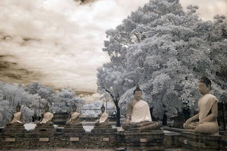 dhamma: Sitting Buddha Dhamma preaching meeting infrared effect.